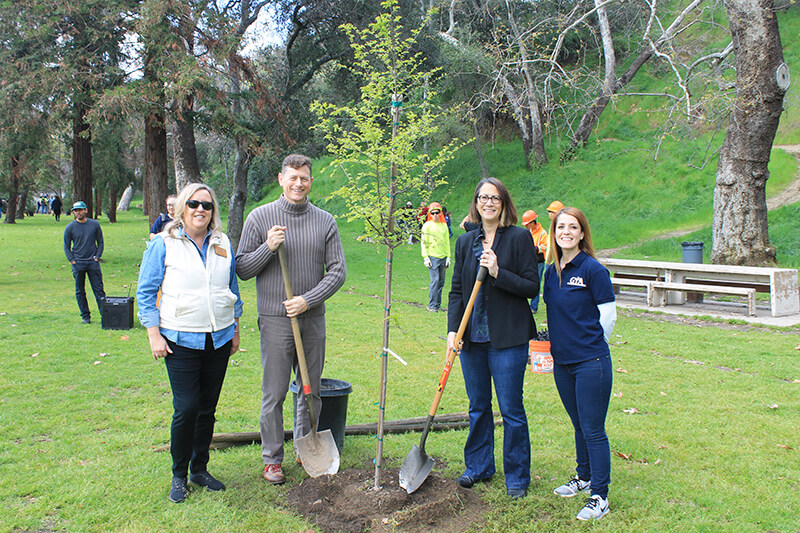 Tree planting event in spring of 2019 in Glendale