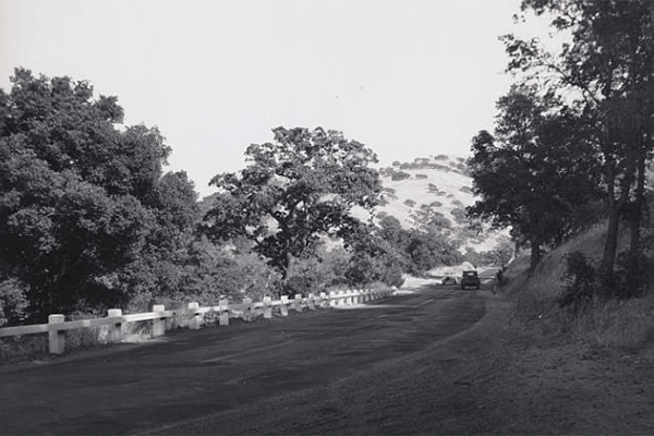 Black and white photo of car driving on hillside section of Pacheco Pass Highway with trees on the side of the road