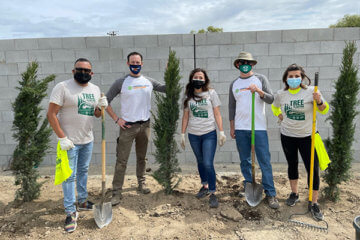 three men and two women wearing facemasks and holding shovels by recently planted trees